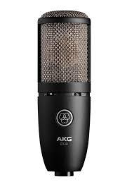 AKG Preception P220